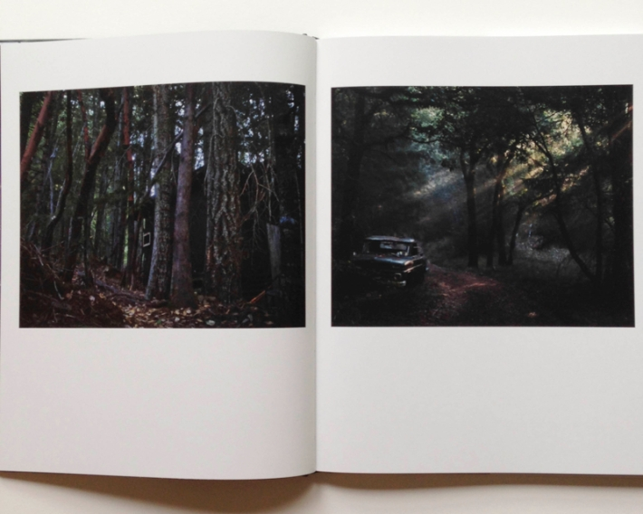 134d6013e541293d-bookpage8